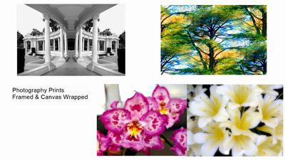 Photography Art (Various Sizes)