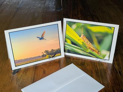 Note Cards - Hand Signed On Fine Art Paper